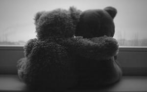 abraço urso